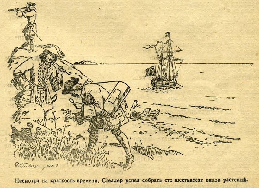 44 Командор бобрового моря 49