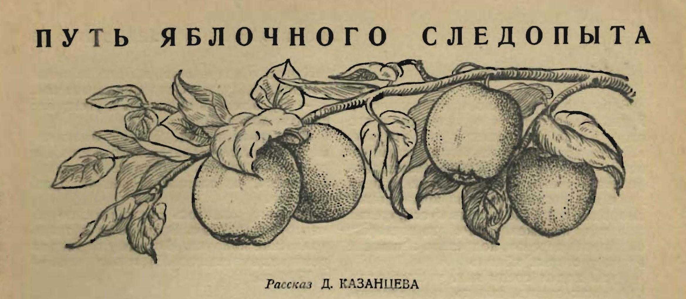 3 путь яблочного следопыта 3