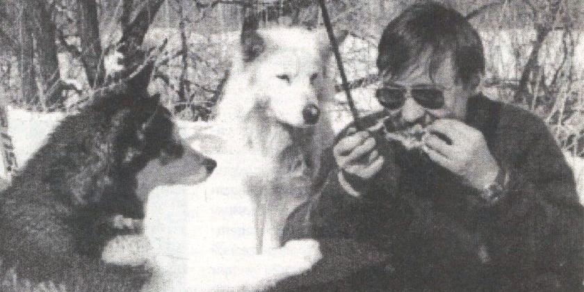 Собаки из Джека Лондона