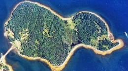 Тайна дубового острова
