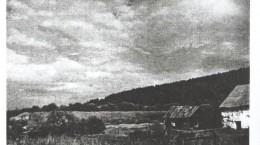 Расторгуевская жила и земельные споры
