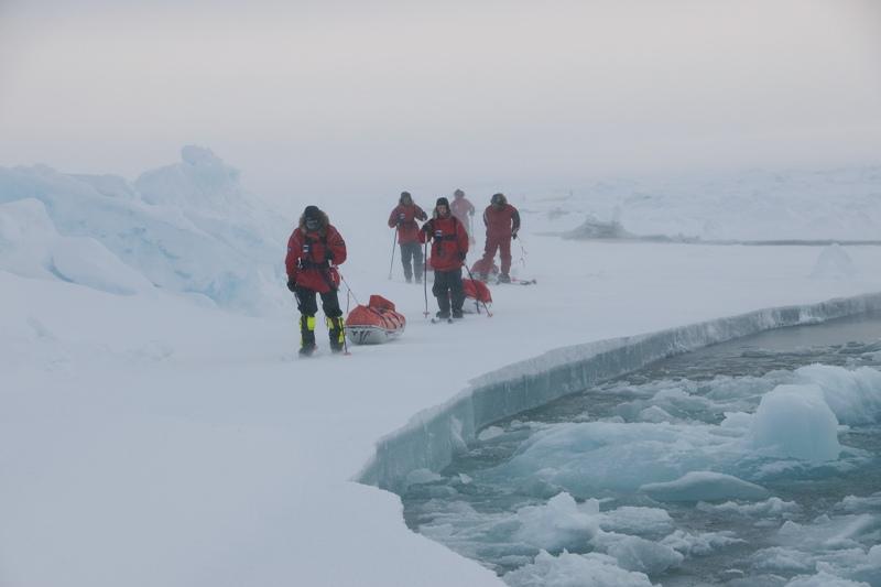 На Северный полюс!
