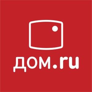 DomRU_logo new