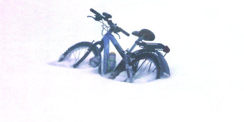 Зимой в поход ... на велосипеде