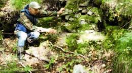 Остров Сосновый — легенды и факты