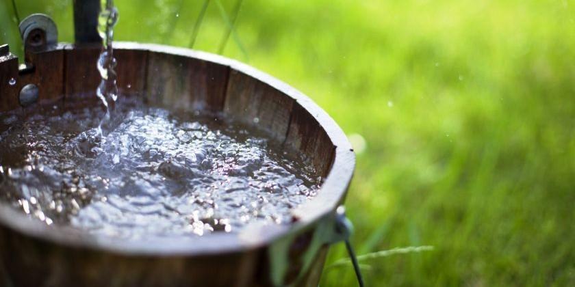 Утоление жажды