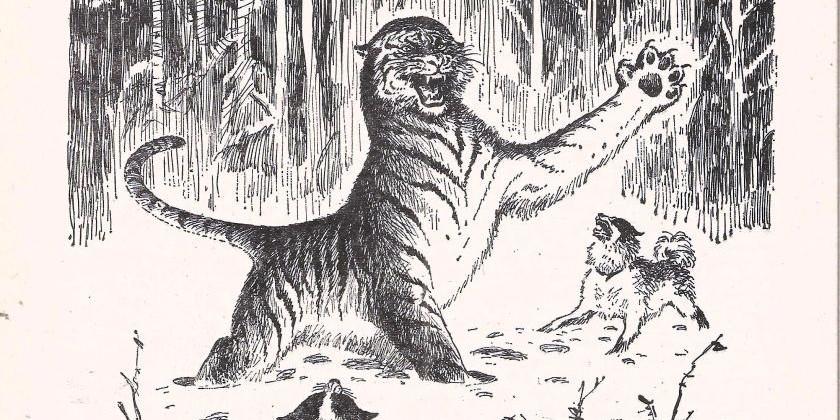 Поймать тигра