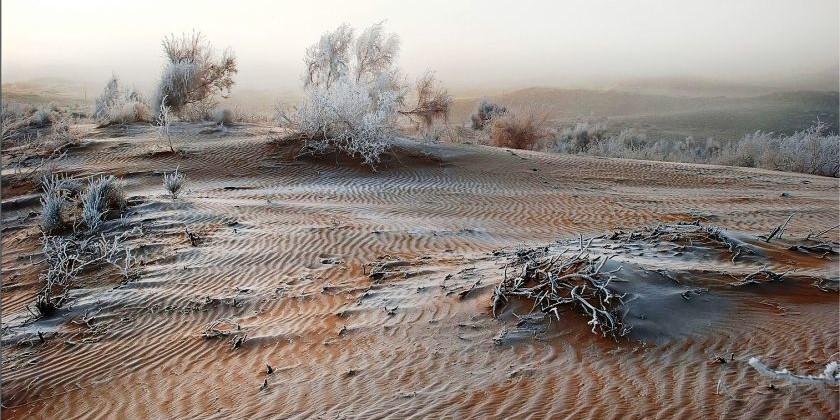 Через пустыню Бетпак-Дала