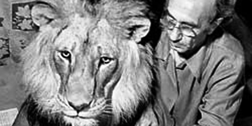 Почему рычал лев