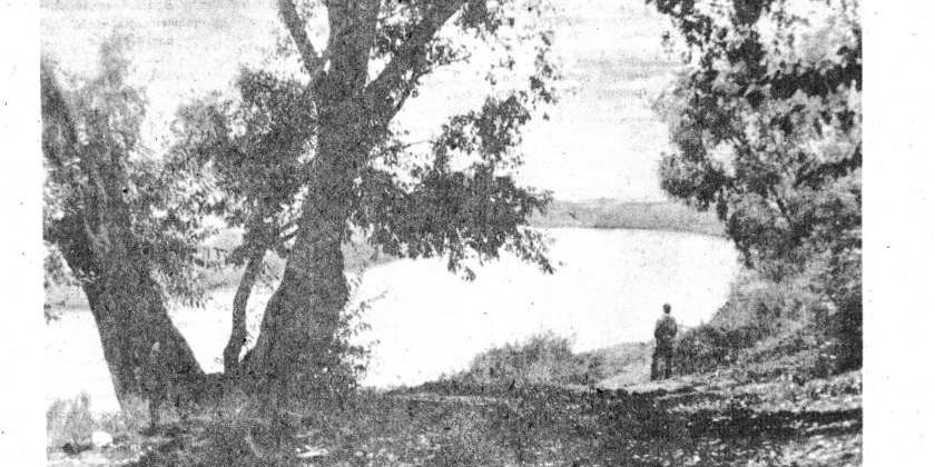 Парк Андрея