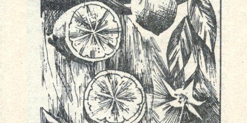 Горонозаводской лимон